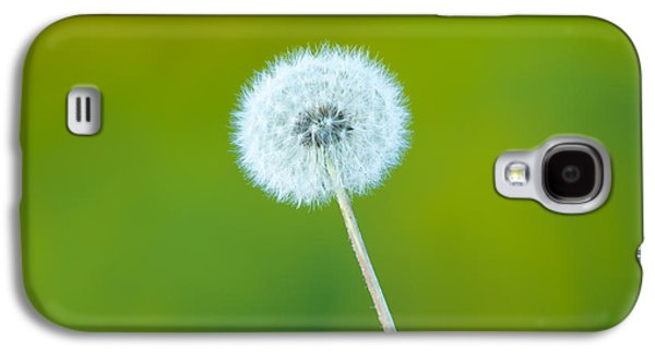 Wind Photographs Galaxy S4 Cases - Dandelion Galaxy S4 Case by Sebastian Musial