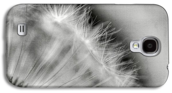 Dandelion Seeds - Black And White Galaxy S4 Case by Marianna Mills
