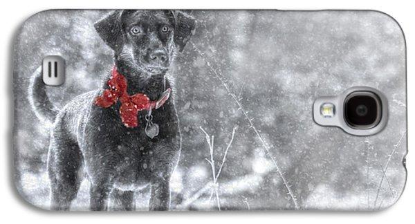 Labrador Retriever Digital Galaxy S4 Cases - Dashing Through the Snow Galaxy S4 Case by Lori Deiter