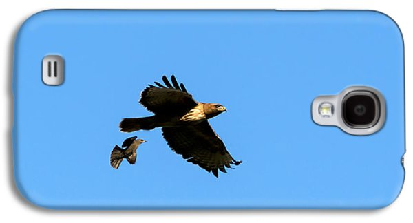 Red Tail Hawk Galaxy S4 Cases - David and Goliath Galaxy S4 Case by Mike  Dawson