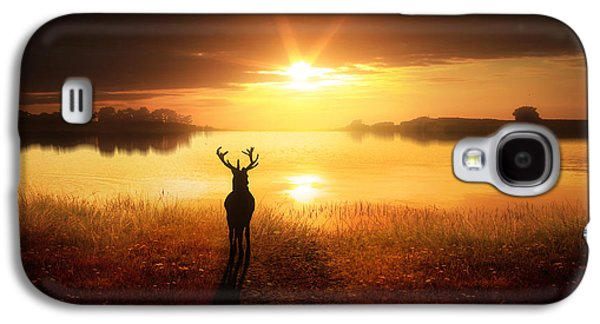 Deer Galaxy S4 Cases - Dawns Golden Light Galaxy S4 Case by Jennifer Woodward