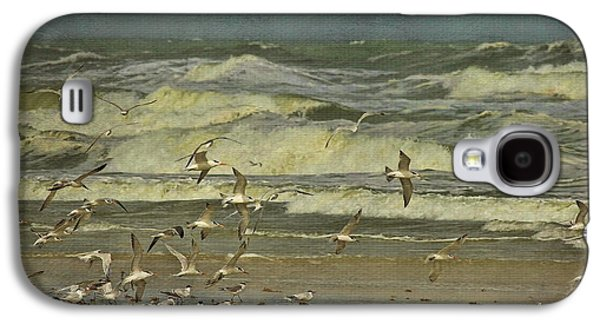 Tern Galaxy S4 Cases - Day For The Birds Galaxy S4 Case by Deborah Benoit