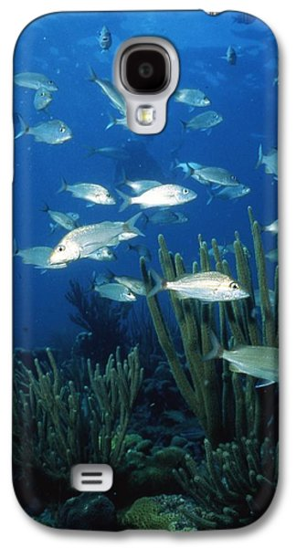 Schools Of Fish Galaxy S4 Cases - Day in the Ocean Galaxy S4 Case by Retro Images Archive