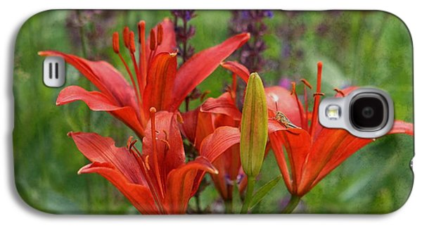Garden Scene Photographs Galaxy S4 Cases - Lilies and Foe Galaxy S4 Case by Kae Cheatham
