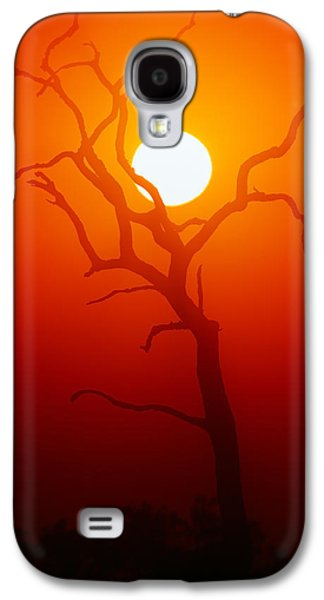 Misty Galaxy S4 Cases - Dead Tree silhouette and glowing sun Galaxy S4 Case by Johan Swanepoel