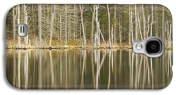 Beautiful Scenery Galaxy S4 Cases - Dead Trees Reflecting On A Maine Beaver  Pond Galaxy S4 Case by Keith Webber Jr