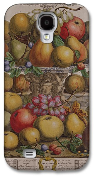 Platter Photographs Galaxy S4 Cases - December, From Twelve Months Of Fruits, By Robert Furber C.1674-1756 Engraved By Henry Fletcher Galaxy S4 Case by Pieter Casteels