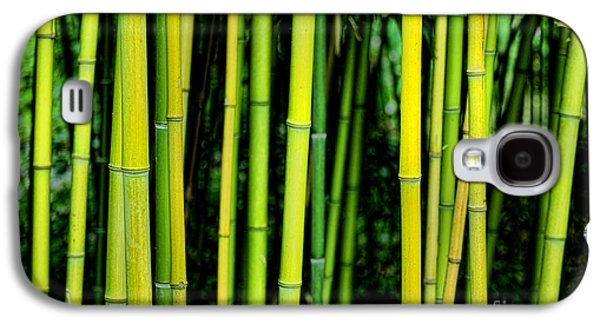 Bamboo Galaxy S4 Cases - Deep Bamboo Galaxy S4 Case by Olivier Le Queinec