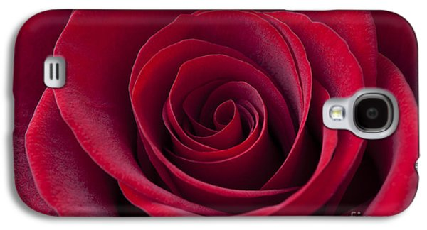 Cupid Galaxy S4 Cases - Deep Red Rose Galaxy S4 Case by Simon Kayne