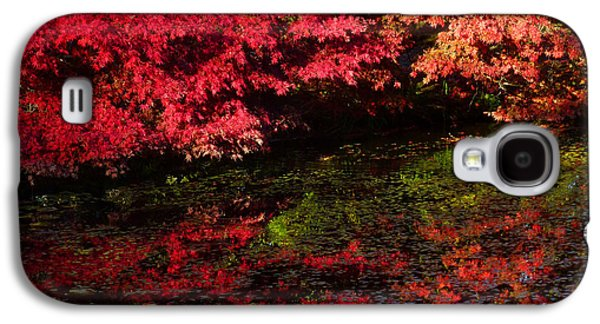Contemplative Photographs Galaxy S4 Cases - Deep Reflections Galaxy S4 Case by Connie Handscomb