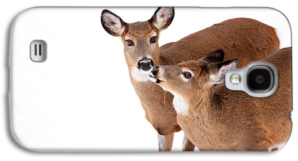 Deer Kisses Galaxy S4 Case by Karol Livote