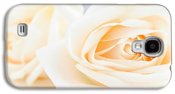 Nature Center Galaxy S4 Cases - Delicate beige roses Galaxy S4 Case by Elena Elisseeva