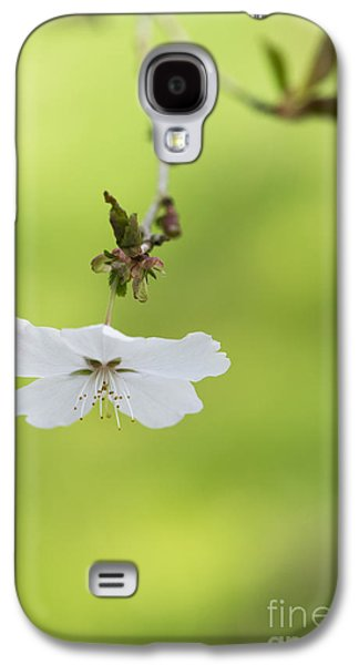 Fruit Tree Art Galaxy S4 Cases - Delicate  Galaxy S4 Case by Tim Gainey