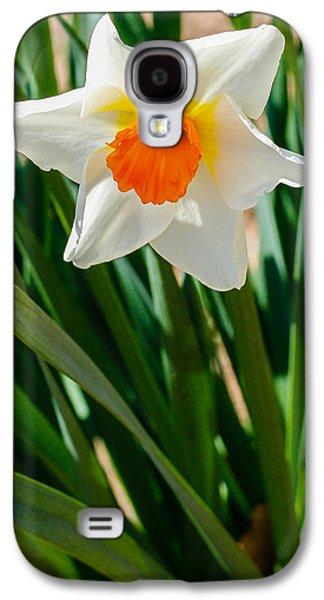 Cheekwood Galaxy S4 Cases - Delicate White Flower Galaxy S4 Case by Robert Hebert