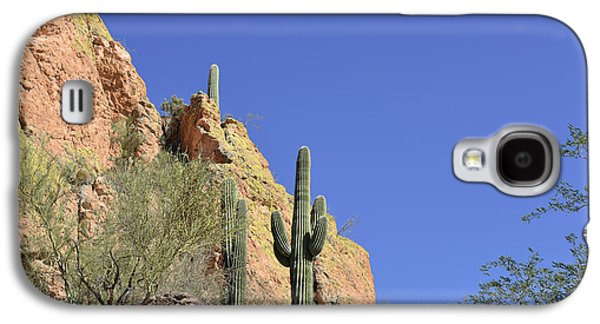 Flat Iron Galaxy S4 Cases - Desert Plants of The Superstitions Galaxy S4 Case by Christine Till