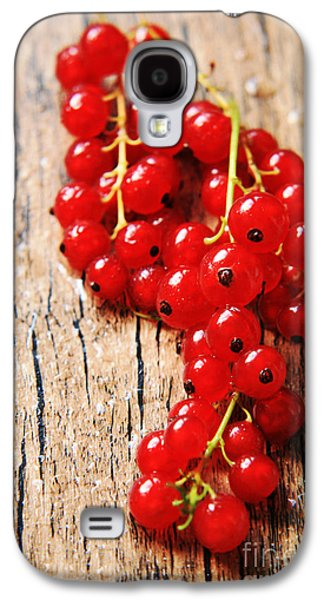 Agronomy Photographs Galaxy S4 Cases - Dessert Galaxy S4 Case by Lali Kacharava
