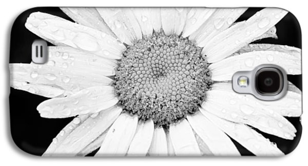 Nature Study Photographs Galaxy S4 Cases - Dew Drop Daisy Galaxy S4 Case by Adam Romanowicz