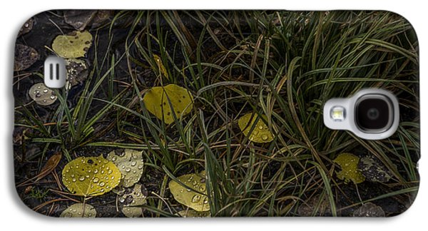 Fall Grass Galaxy S4 Cases - Dew Drops Galaxy S4 Case by Cat Connor
