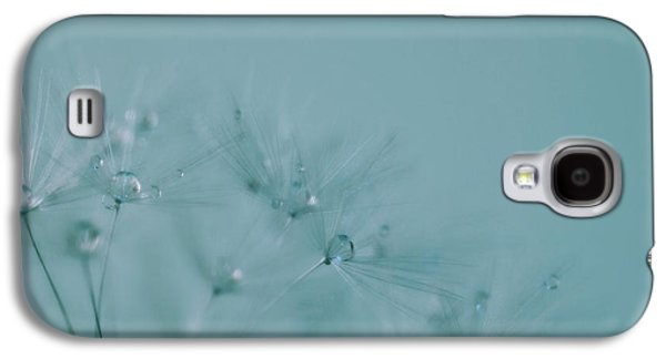Torn Galaxy S4 Cases - Dew Drops on Dandelion Seeds Galaxy S4 Case by Marianna Mills