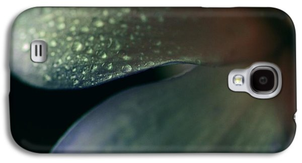 Simplistic Galaxy S4 Cases - Dew Drops on Dogwood Flower  Galaxy S4 Case by Marianna Mills