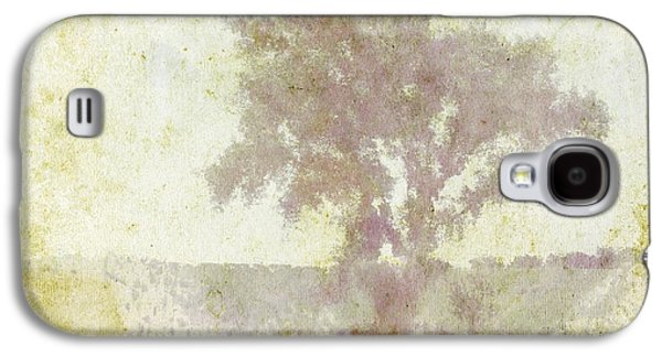 Diadem Of Beauty Galaxy S4 Case by Brett Pfister
