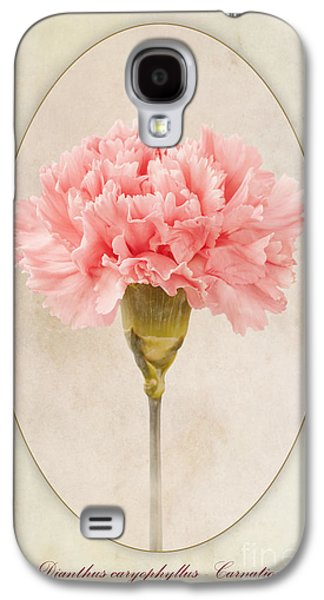 Macro Digital Galaxy S4 Cases - Dianthus caryophyllus Carnation Galaxy S4 Case by John Edwards