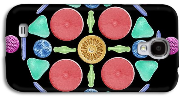 Diatoms And Radiolaria Galaxy S4 Case by Steve Gschmeissner