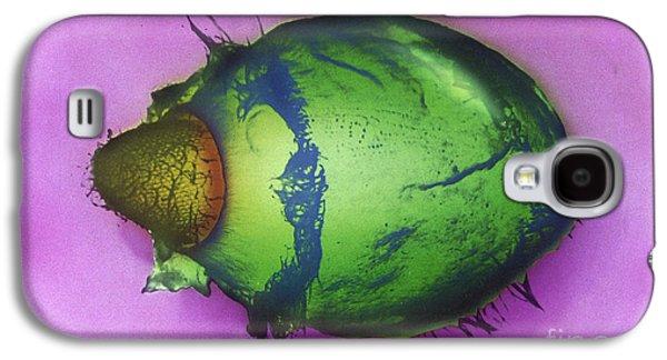 Protozoa Galaxy S4 Cases - Didinium SEM Galaxy S4 Case by Biophoto Associates