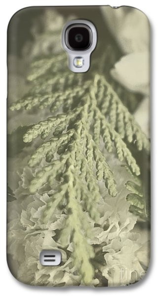 Nature Abstract Galaxy S4 Cases - Discovery Galaxy S4 Case by Ella Kaye Dickey