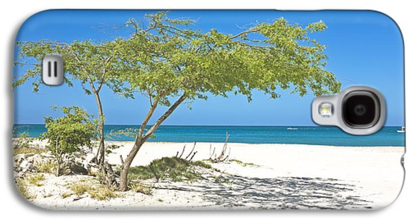Beach Landscape Galaxy S4 Cases - Divi divi tree on Aruba island in the Caribbean Galaxy S4 Case by Manon Manuel
