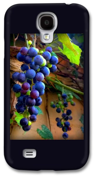 Concord Grapes Galaxy S4 Cases - Divine Perfection Galaxy S4 Case by Karen Wiles