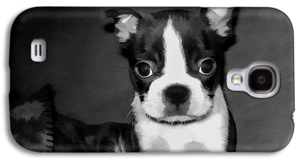 Puppy Digital Galaxy S4 Cases - Do You Love Me Galaxy S4 Case by Jordan Blackstone