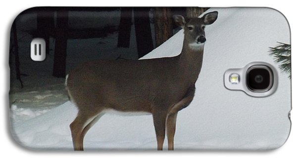 Behind The Scenes Photographs Galaxy S4 Cases - Doe a Deer Galaxy S4 Case by Brenda Brown