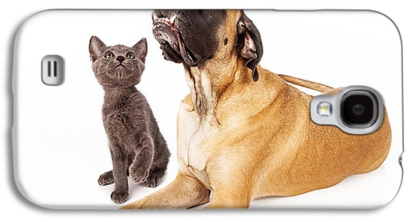 Guard Dog Galaxy S4 Cases - Dog and cat looking at a bird Galaxy S4 Case by Susan  Schmitz