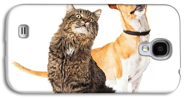 Cutouts Galaxy S4 Cases - Dog and Cat Looking Up Together Galaxy S4 Case by Susan  Schmitz