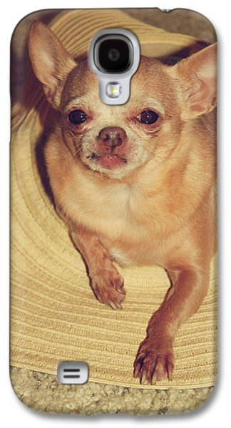 Toy Dog Galaxy S4 Cases - Dog in the Hat Galaxy S4 Case by Laurie Search