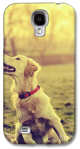 Light Pyrography Galaxy S4 Cases - Dog in the park Galaxy S4 Case by Jelena Jovanovic