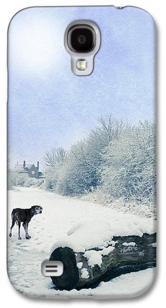 Dog Walking Galaxy S4 Cases - Dog Looking Back Galaxy S4 Case by Amanda And Christopher Elwell