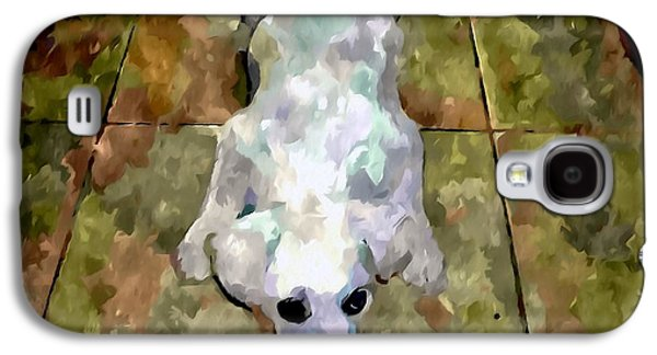 Dog Close-up Paintings Galaxy S4 Cases - Dog lying on floor  Galaxy S4 Case by Lanjee Chee