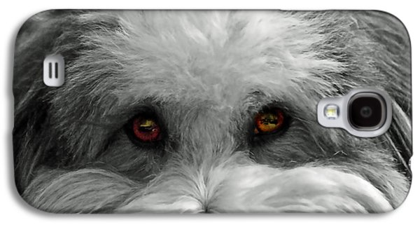 Tulear Galaxy S4 Cases - Coton Eyes Galaxy S4 Case by Keith Armstrong