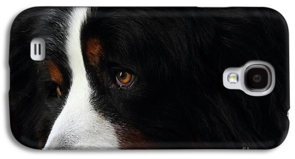 Best Friend Photographs Galaxy S4 Cases - Dog Galaxy S4 Case by Wingsdomain Art and Photography