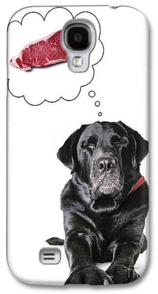 Sleeping Dog Galaxy S4 Cases - Doggie Dreams Galaxy S4 Case by Diane Diederich