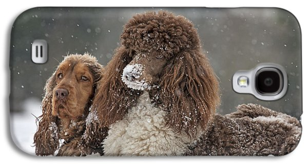 Dogs In Snow. Galaxy S4 Cases - Dogs In Snow Galaxy S4 Case by Johan De Meester