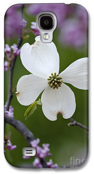 Indiana Flowers Galaxy S4 Cases - Dogwood and Redbud - D008979 Galaxy S4 Case by Daniel Dempster