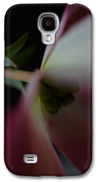 Genus Galaxy S4 Cases - Dogwood Flower Galaxy S4 Case by Marianna Mills