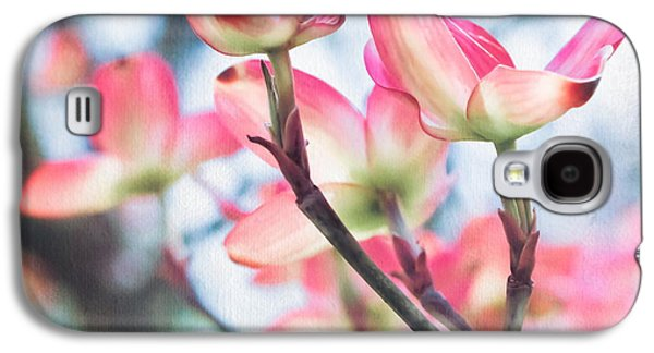 Original Photographs Galaxy S4 Cases - Dogwood Tree Galaxy S4 Case by Colleen Kammerer