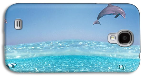 Dolphin Galaxy S4 Cases - Dolphins Leaping In Air Galaxy S4 Case by Panoramic Images