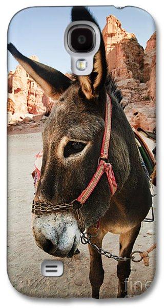 Jordan Pyrography Galaxy S4 Cases - Donkey Galaxy S4 Case by Jelena Jovanovic
