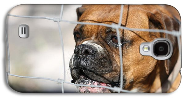 Boxer Galaxy S4 Cases - Dont Fence Me In Galaxy S4 Case by Terry Fleckney