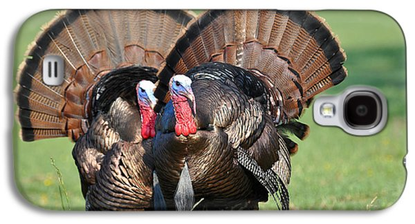 Wild Turkey Galaxy S4 Cases - Double Trouble Galaxy S4 Case by Todd Hostetter